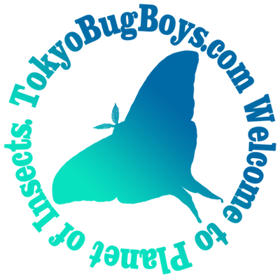 tokyobugboys